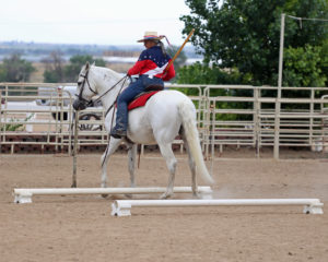Working Equitation Clinic: Ease of Handling with Dressage Principles – 2 day clinic @ Douglas County Fairgrounds - Indoor Arena | Castle Rock | Colorado | United States
