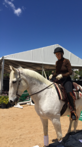 Arabian Horse Day @ Colorado Horse Park @ The Colorado Horse Park  | Parker | Colorado | United States